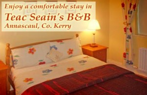 Teac Seains Annascaul Bed and Breakfast